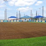 Softball fields with turf